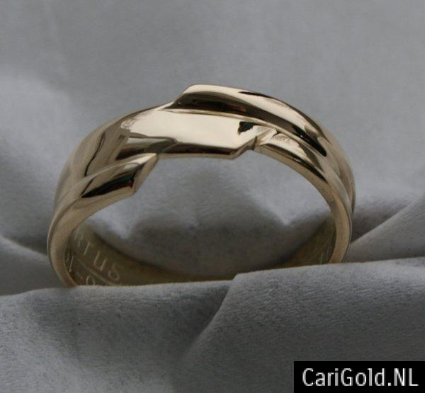 CariGold_nl_ring_14K_goud_HS002